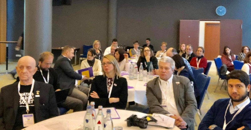 A 'tongue in cheek' report from SAFE Working Conference