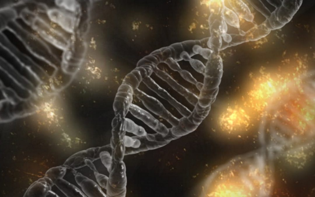 Genetic variants may influence poststroke recovery