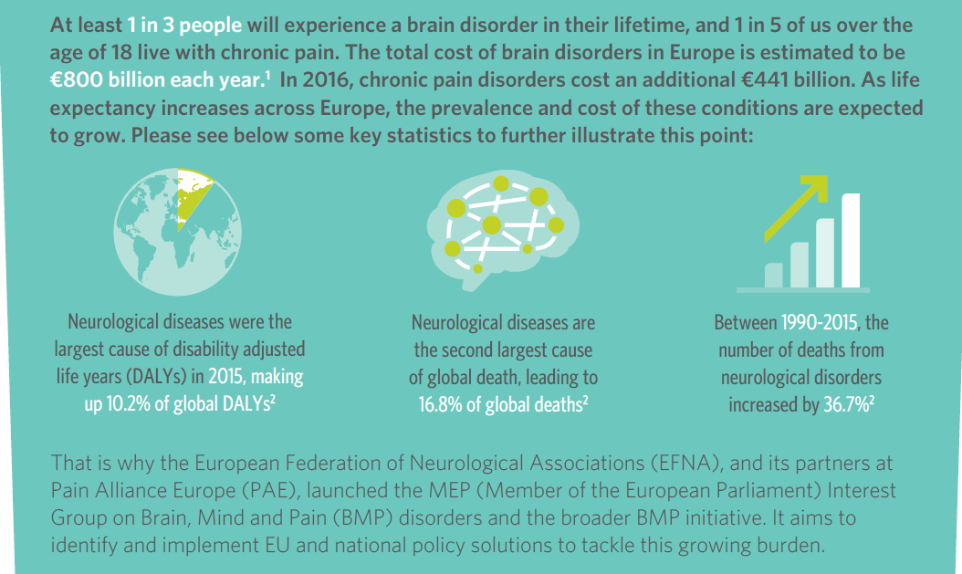 New Brain, Mind and Pain Book of Evidence released for the 2019-2024 EU mandate