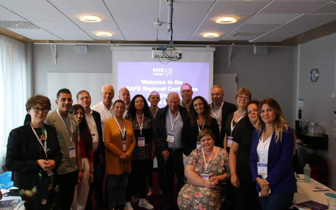 Third and final SAFE Regional Conference held in Stockholm on 26th June