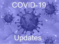 Covid 19 widget